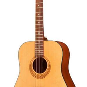 Luna Gypsy Series Parlor Acoustic Guitar with Built in Tuner