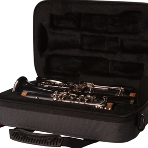 Gator Lightweight Polyfoam Case for Clarinet