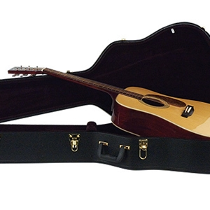 Johnson Dreadnaught Case Acoustic